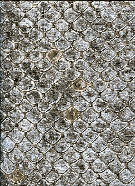 Roberto Cavalli Home No.6 Wallpaper RC17101 By Emiliana For Colemans